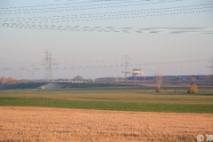Herbst_2010_008