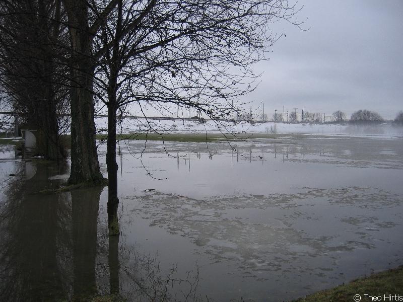 Hochwasser Azmannsdorfer Park