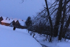 Winter_2010_002