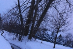 Winter_2010_003