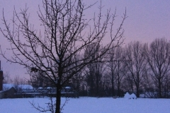 Winter_2010_004