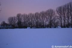Winter_2010_005