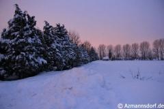 Winter_2010_006