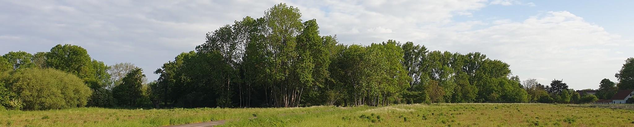 Gemeinde Azmannsdorf